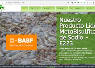 inversiones24-7.com